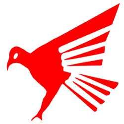 Falcon Tours & Travels