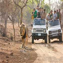 Gujarat Holidays Tours and Travels Services