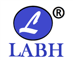 Labh Software & Solutions