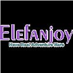 EleFanjoy
