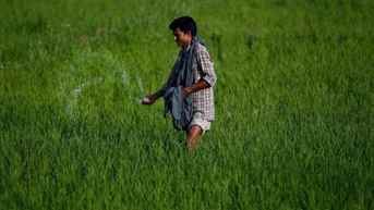 Centre releases Rs 50,850 cr to farmers under PM-KISAN