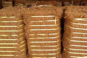Export of coir, coir products for 2019-20 registers an all-time high record