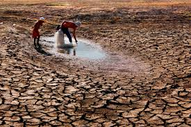 Centre issues drought advisory to 6 states, asks them to use water judiciously