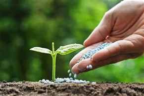 No proposal to cut Fertilizers Subsidies: Govt